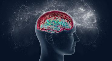 glutammato_neurotrasmettitore
